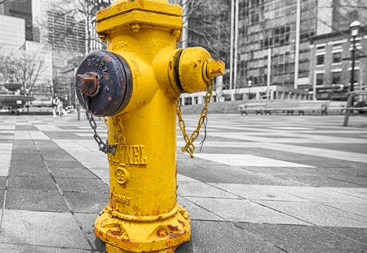 Yellow Hydrant (week 13 of 52)